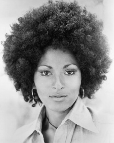 "Pamela Suzette ""Pam"" Grier is an American actress. She became famous in the early 1970s after starring in a string of moderately successful women in prison and blaxploitation films like The Big Bird Cage (1972), Coffy (1973), Foxy Brown (1974) and Sheba Baby (1975)."